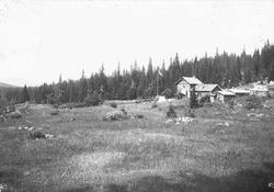 Hus på Holoa seter, Hadeland, Jevnaker, Oppland, 1903. Flagg