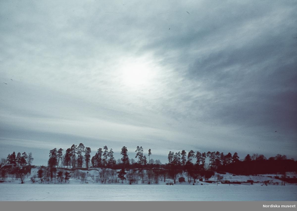 Utsikt över vinterlandskap.