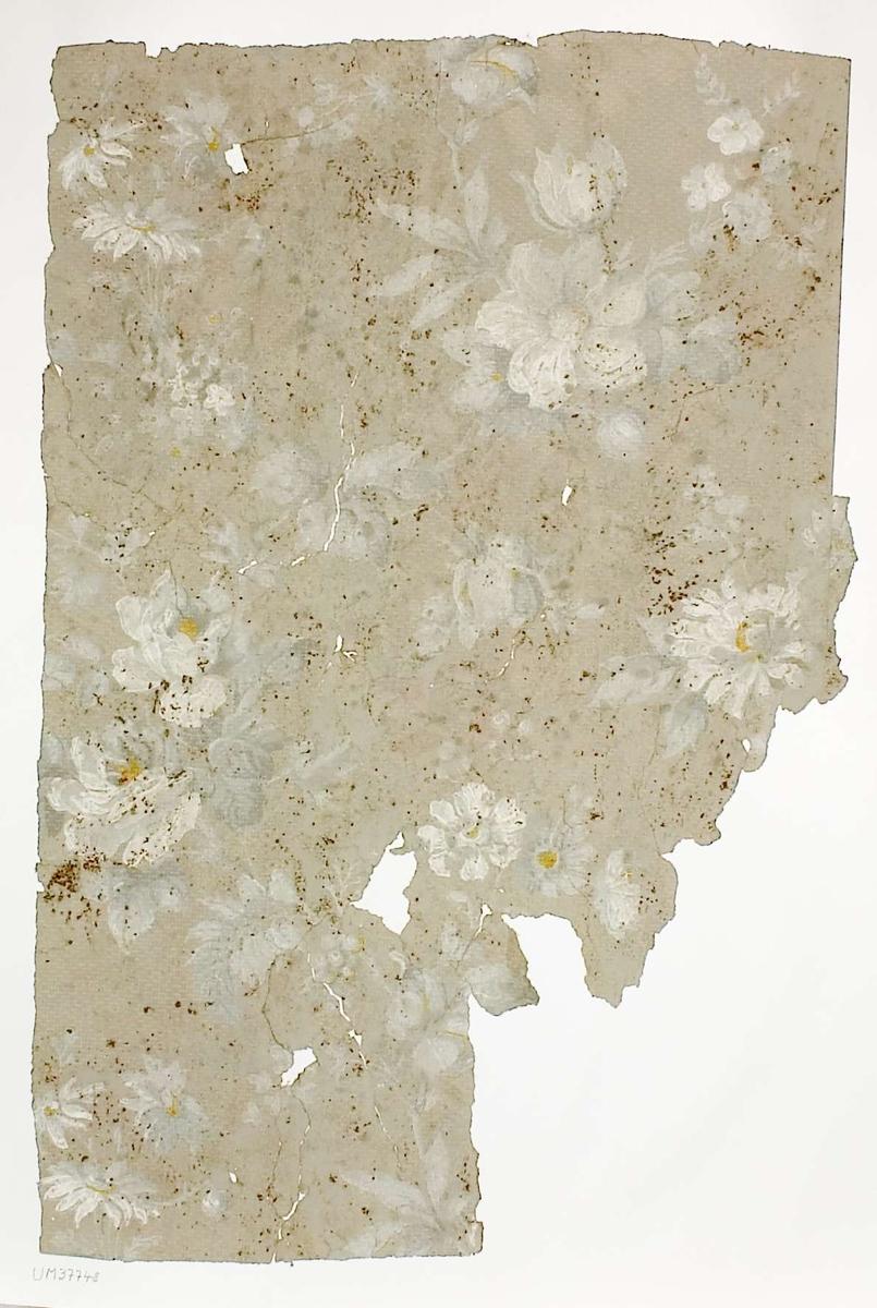 Tapetprov med tryckt mönster, vit och grå. Handskriven text på baksidan av kartongen: Nr 70 Danmarks g:a prästgård norra gavelrummet övre våningen 4.