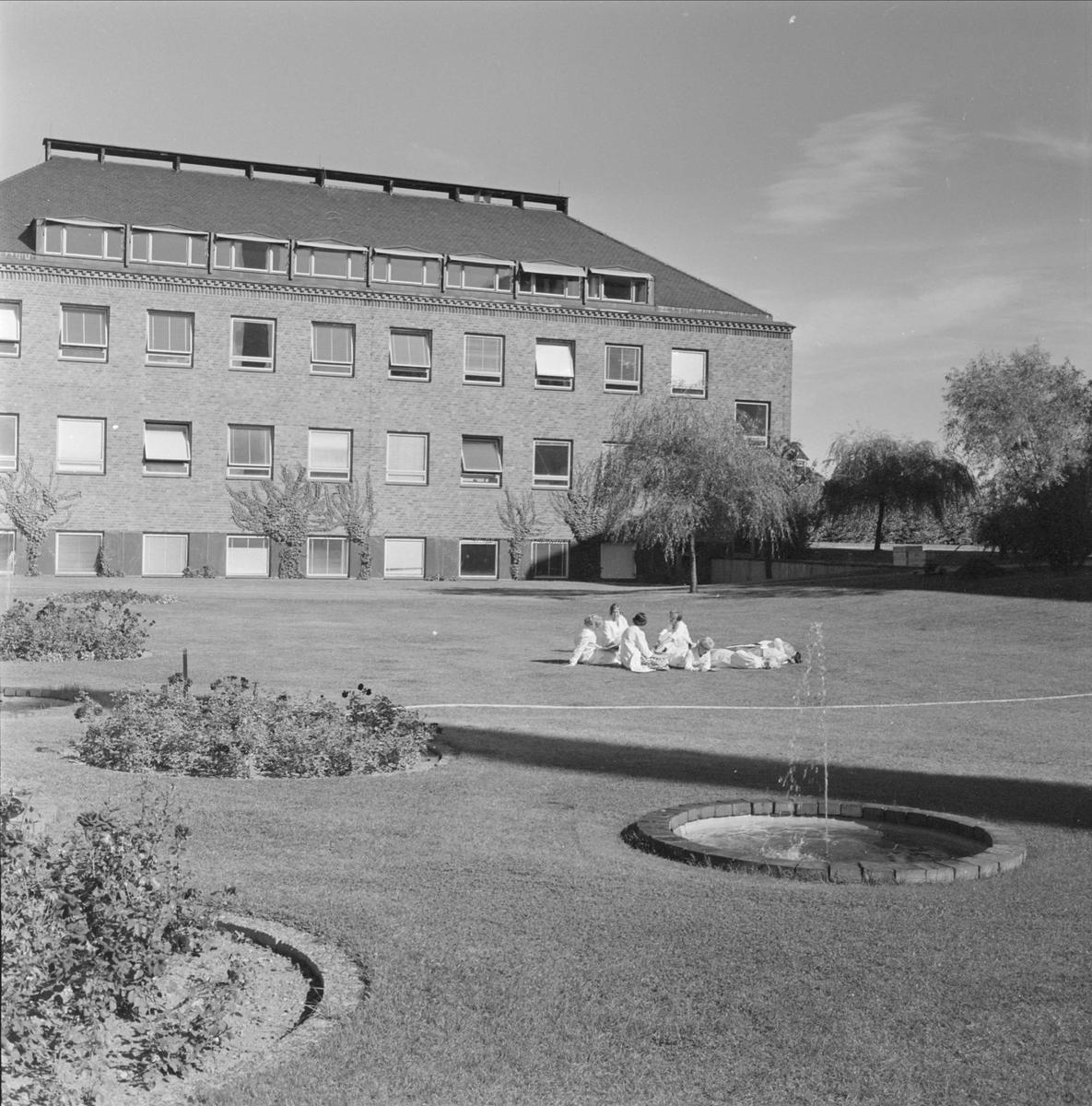 Pharmacia AB, läkemedelsfabrik i Boländerna, Uppsala. Personal tar rast på gräsmattan