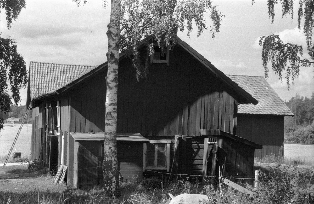 Ladugård, lada och lider, Nederbacka 1:3, Ärentuna socken, Uppland 1976