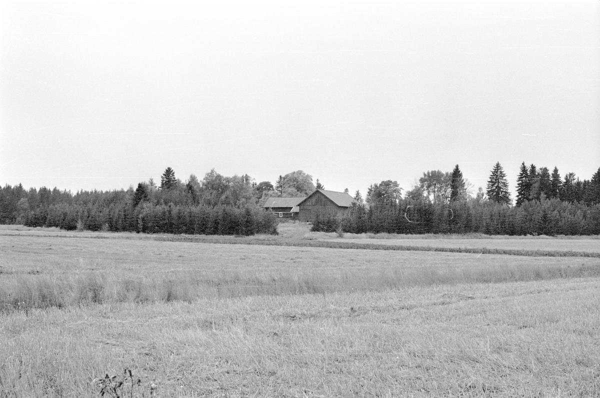 Vy över Hånsta 3:2, Hånsta, Lena socken, Uppland 1978