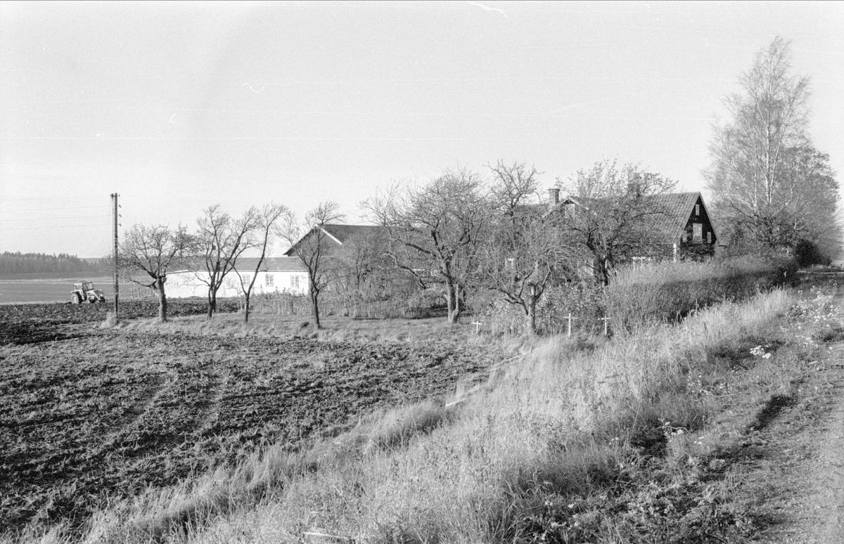 Vy över Husby, Gamla Uppsala 79:15, Gamla Uppsala socken, Uppland 1978