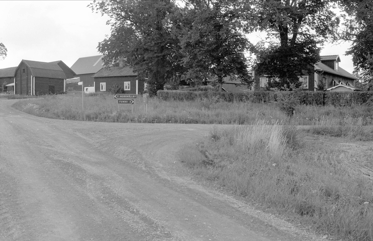 Vy över Gråmunkehöga gård, Gråmunkehöga 5:3, Funbo socken, Uppland 1982