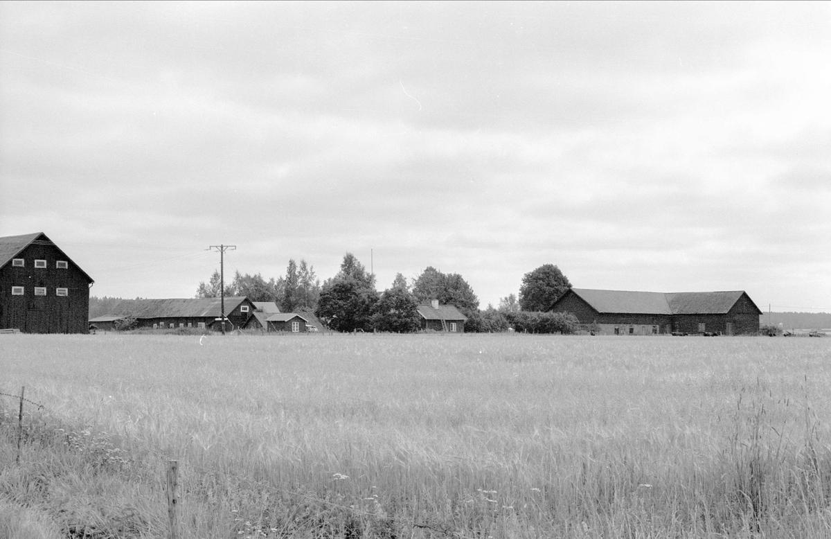 Vy från nordväst över Åkerby 2:3 och 1:4, Åkerby, Funbo socken, Uppland 1982