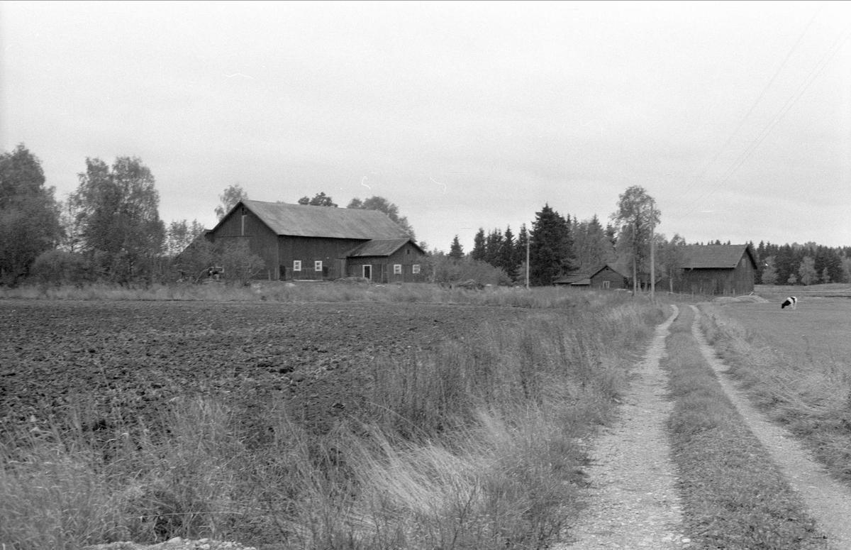 Lada och ladugård, Ängsholmen, Bälinge socken, Uppland 1983