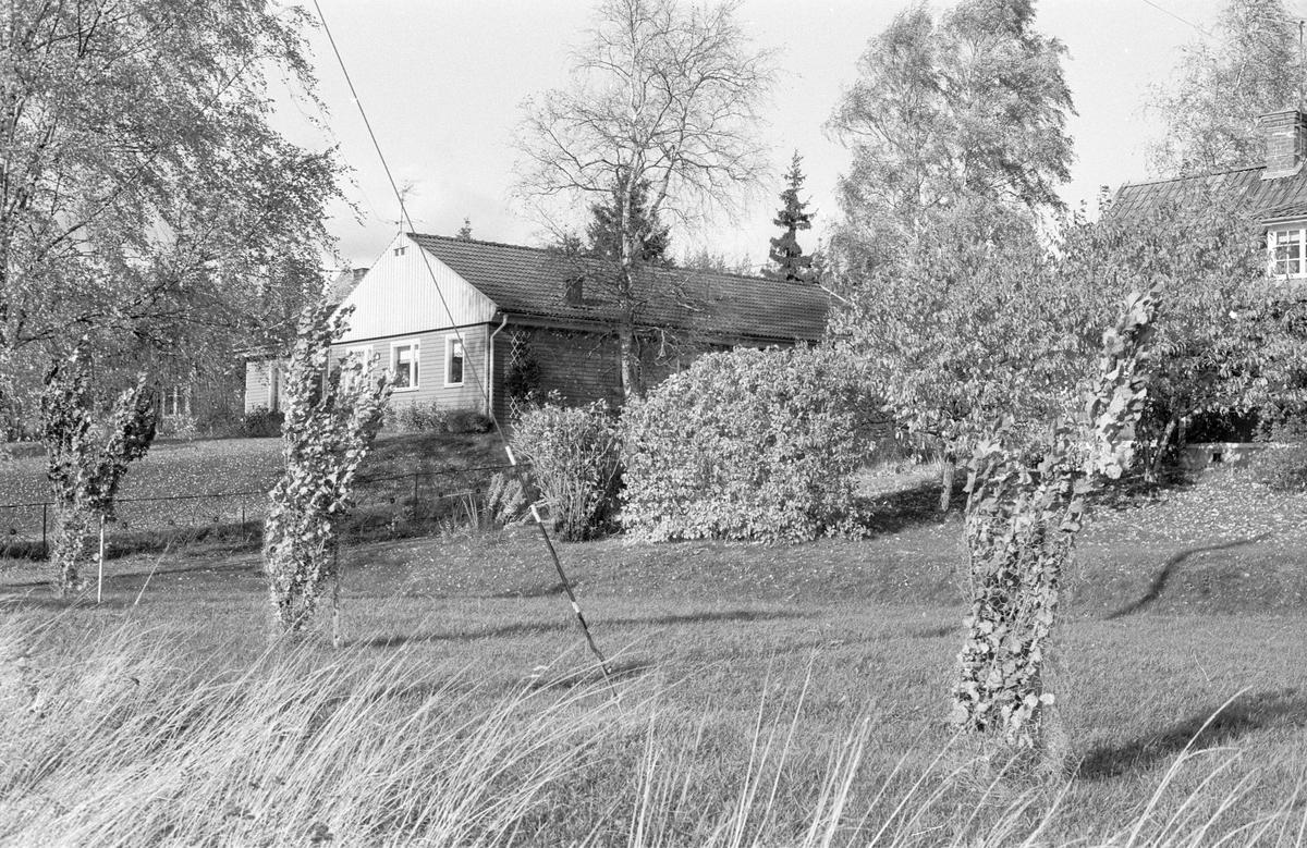 Bostadshus, Blacksta 3:14, Blacksta, Jumkil socken, Uppland 1983