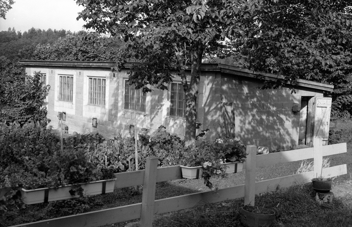 Hönshus, Ekeby gård, Ekeby, Knutby socken, Uppland 1987