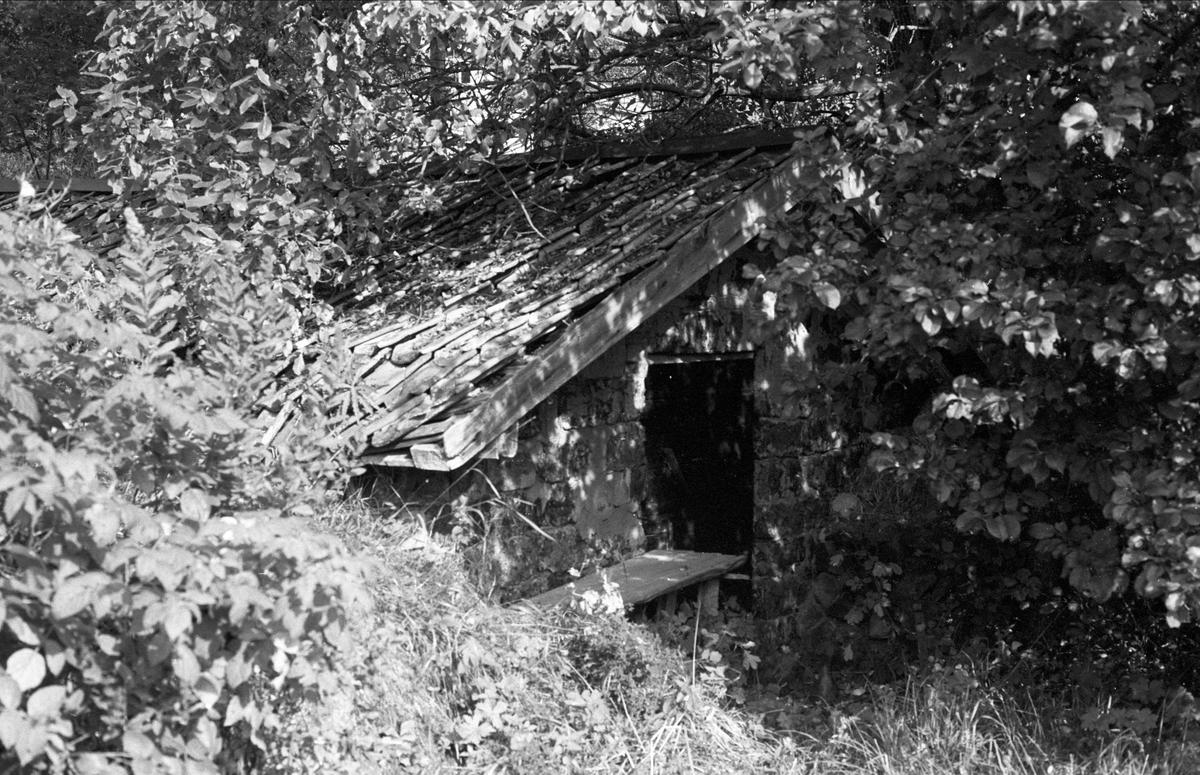 Källare, Lännakvarn, Marma, Almunge socken, Uppland 1987