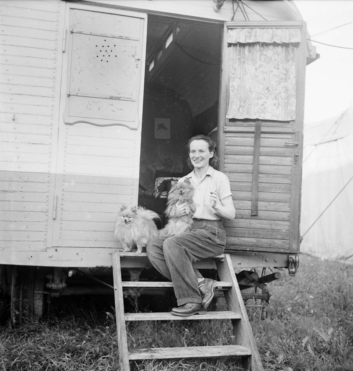 """""""Fru Busch"""" på cirkus, Uppsala 1948"""
