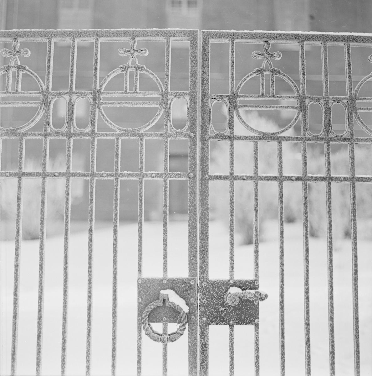 Vinter - grind, Uppsala december 1962