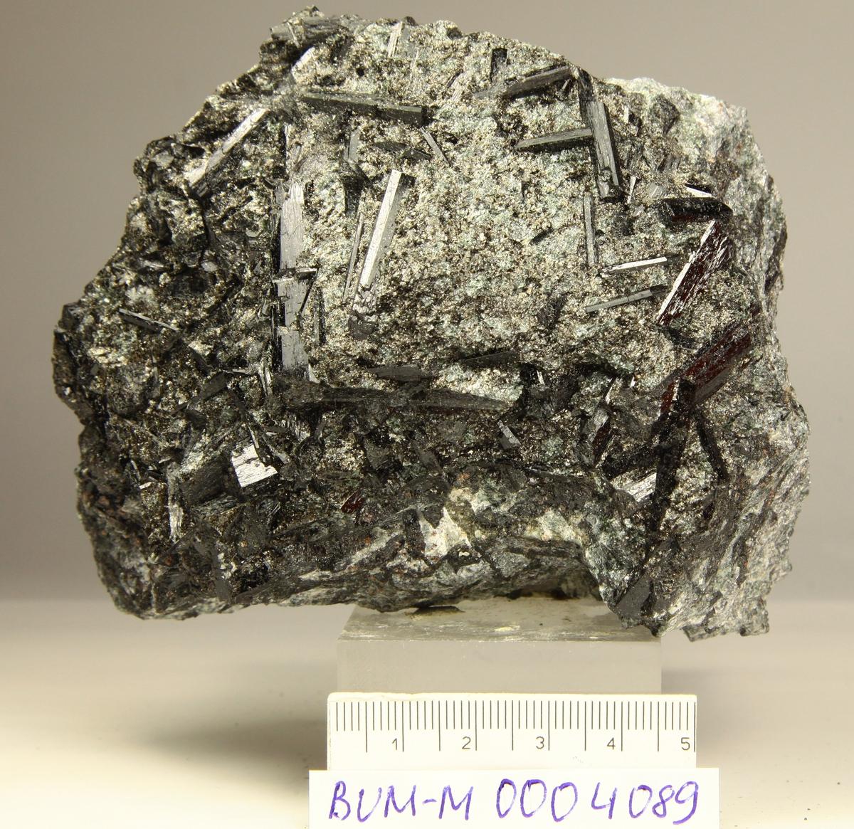 Dravitt, sorte xls i biotitt og kloritt. Granat, talk.