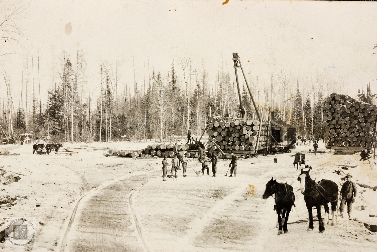 Kort med skogsarbeid fra USA. Bjelland.