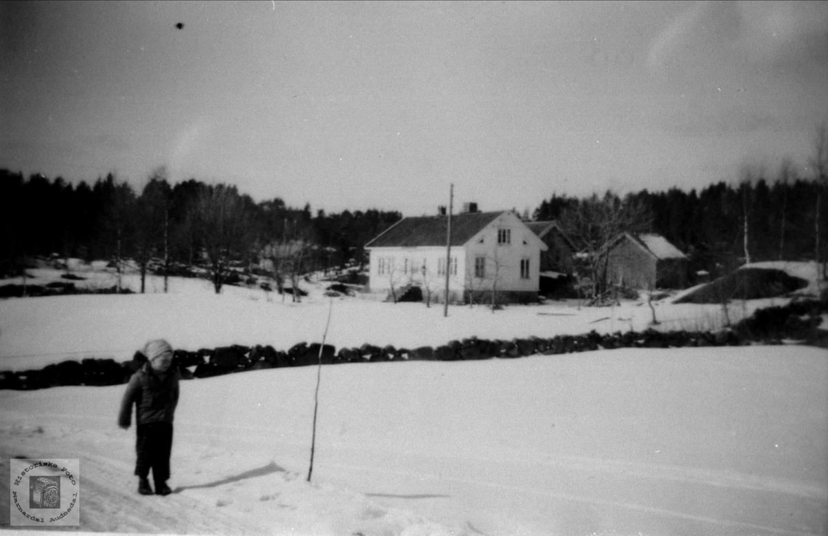 """Huset """"Der nord"""" på Bjørnestøl i Øyslebø."""
