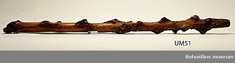Kraftig spatserkäpp snidad ur naturvuxen gren. Överdelen pryds av ett snidat djurhuvud, troligen en hund..  Enligt text på katalogkort: Tillhört skalden Wilhelm von Braun 1859.  Ur handskrivna katalogen 1957-1958: L. 95 cm; naturvuxen käpp, gjord av 2 delar, handtaget ett skulpterat hundhuvud. Tillhört W.v. Braun. Fuktskadad.  Lappkatalog: 81