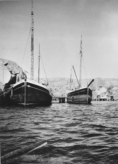 """Enligt tidigare noteringar: """"Kuttrarna """"Alfhild"""" och """"Fenby"""" vid Sjöviken, Hamburgö. 1959. Repro 1985 av foto tillhörande Helge Akervall, Hamburgö""""."""