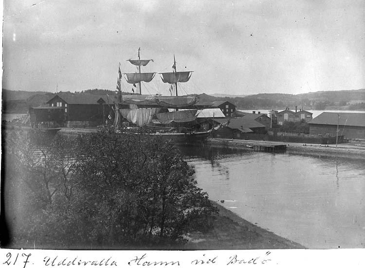 """Text på kortet: """"217. Uddevalla hamn vid Badö"""".  .   ::"""