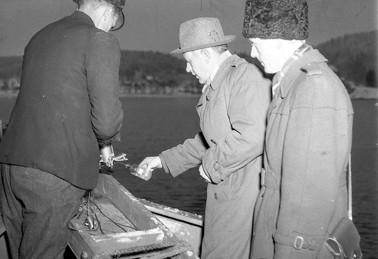 """Enligt notering: """"Vattenprov Byfjorden 12/1 1948""""."""