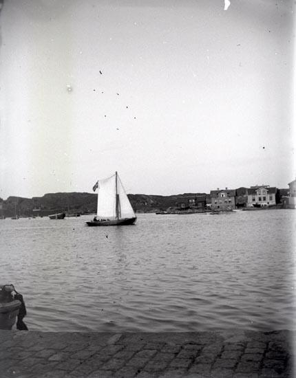 Segelbåt i hamnen.