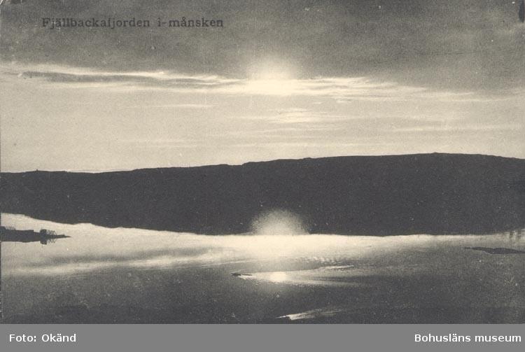 """Tryckt text på kortet: """"Fjällbackafjorden i månsken"""". """"FÖRLAG: LOTTEN JOHANSSON, FJÄLLBACKA"""""""