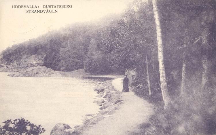 """Tryckt text på kortet: """"Uddevalla: Gustafsberg, Strandvägen."""" """"Förlag: Uddevalla Musikhandel (C. Th. Crona)."""""""