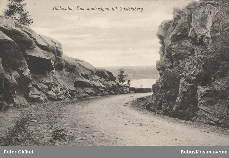 """Tryckt text på kortet: """"Uddevalla. Nya landsvägen till Gustafsberg."""" ::"""
