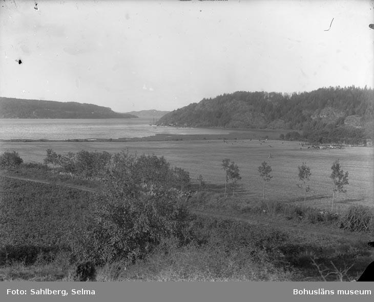 """Enligt fotografens noteringar: """"Saltkällefjorden."""""""