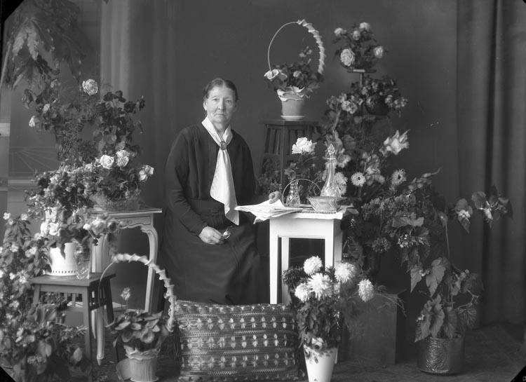 """Enligt fotografens noteringar: """"Fonder. Fru Elemina Sahlberg Lyckebo 75 år""""."""