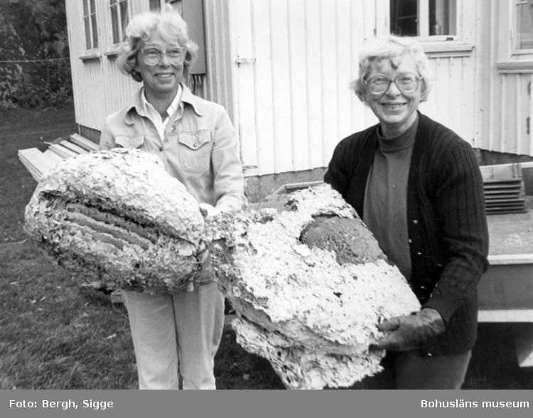 """Enligt text på fotot: """"Systrarna Brita Skäremo och Ingrid Rödström med getingbo från Amhults gamla skola""""."""