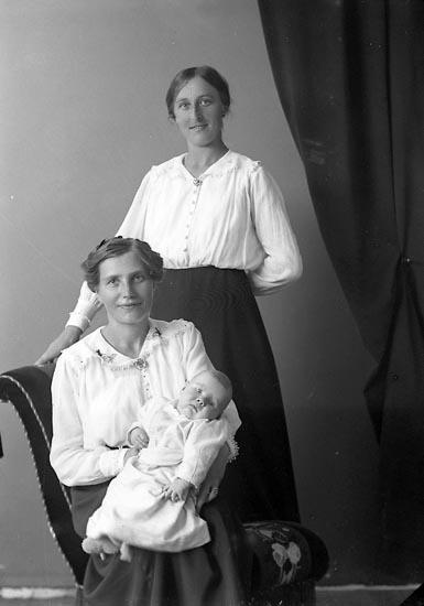 "Enligt fotografens journal nr 4 1918-1922: ""Karlsson, Fru Frida Apleröd, Ödsmål""."