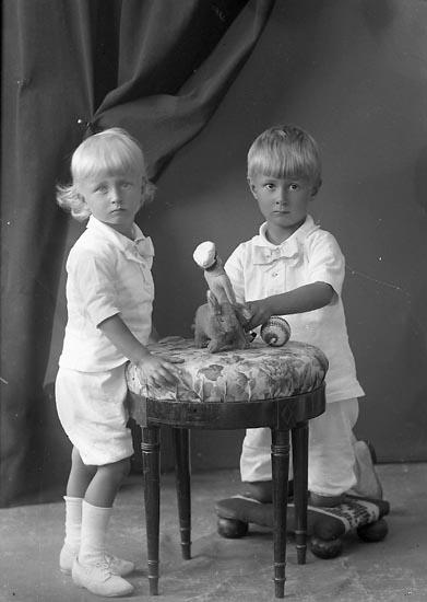 "Enligt fotografens journal nr 3 1916-1917: ""Ström, Dr. barnen Ön""."