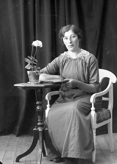 "Enligt fotografens journal nr 3 1916-1917: ""Andersson, Alma, Efja, Hjälteby""."