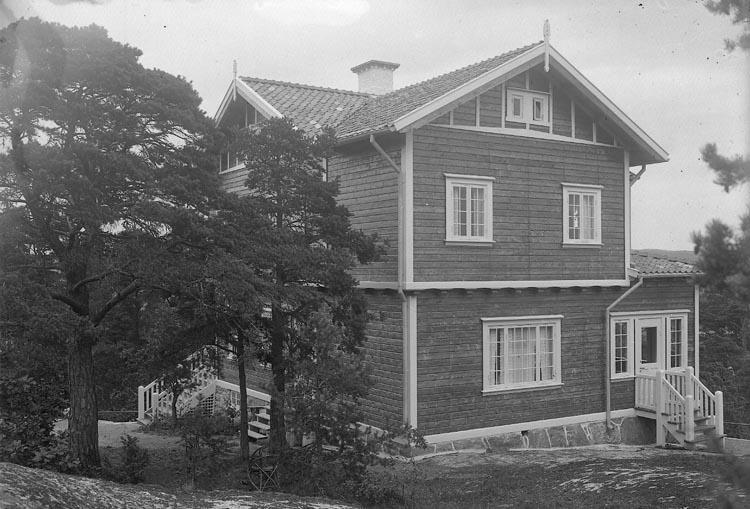 """Enligt fotograrens journal nr 2 1909-1915: """"Stjärnspets, Major Villan Ön""""."""