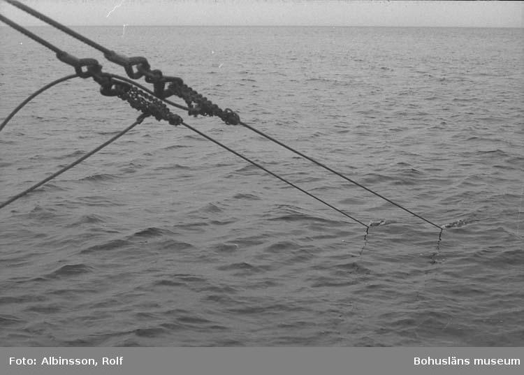 """Enligt fotografens noteringar: """"Trålwiren sedd från aktern.""""  Fototid: 1996-03-06."""