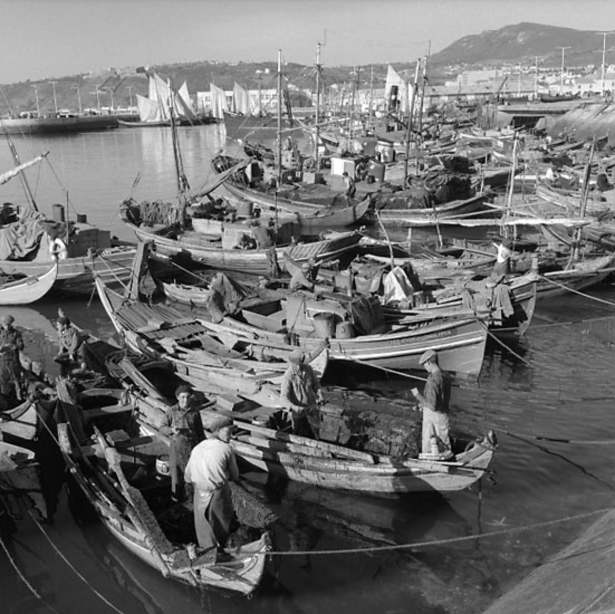 45. Portugal. Fotojournal finns på B.M.A. + fotoalbum. Samtidigt förvärv: Böcker och arkivmaterial. Foton tagna 1959-11-15. 12 Bilder i serie.