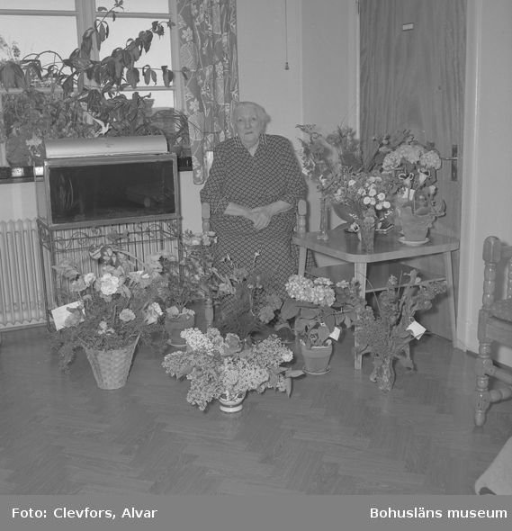 "Text till bilden: ""Fru Jacobsson, Ålderdomshemmet. 90 år. 1954.06.03"""