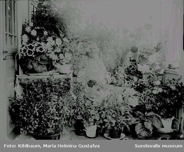 Porträtt. Kvinna i rumsmiljö omgiven av blommor.