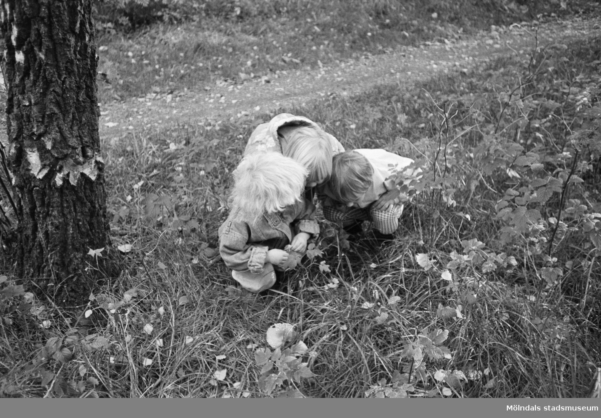 Tre små barn sitter hukade vid en grässlänt. De tittar på något på marken. Till vänster ser man en trädstam.