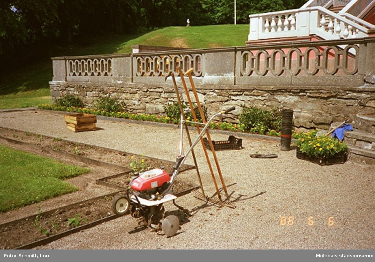 Trädgårdsarbete vid Gunnebo slott, 1988.