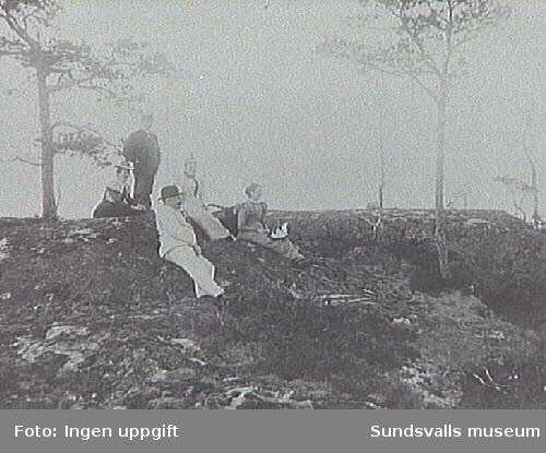 Stående Henrik Wåhlstedt, sittande fr v Anna Dahlin, Johannes Bünsow, Jenni Bünsow, Betti Wåhlstedt.