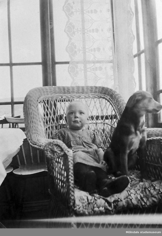 Nina Bengtsson (1918-1973) och en hund sitter i en rottingstol hemma hos mormodern i Labacka, 1920-tal. Föräldrarna var Natanael och Rut Bengtsson, Långåker (Hembygdsgården). Nina gifte sig senare med Gunnar Nilsson från Kärra i Mölndal.