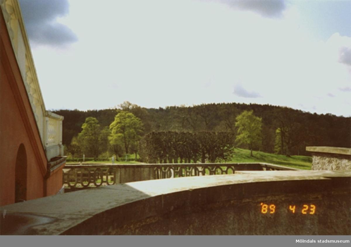Vy från balkongen på parken och bakomliggande skog. Slottstrappan skymtar till vänster.