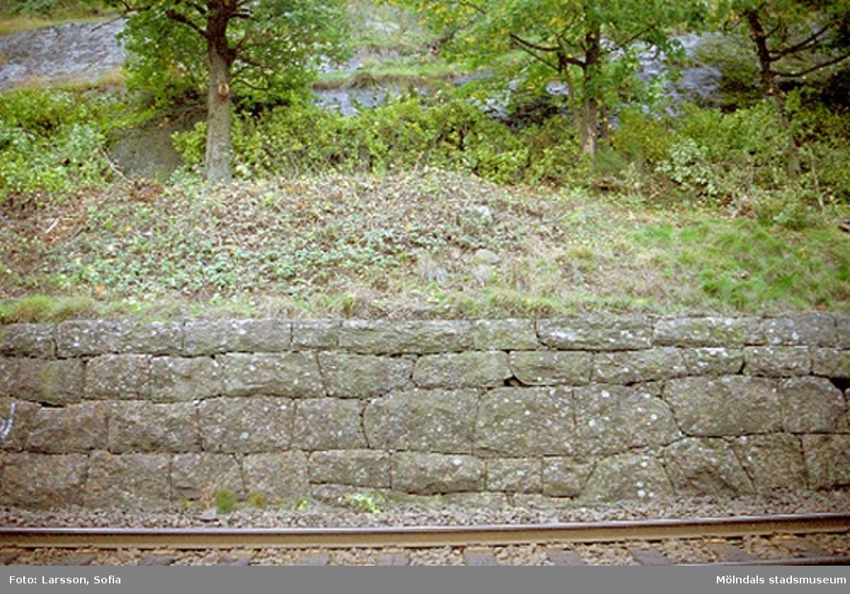 Hejderidarens gravsten.