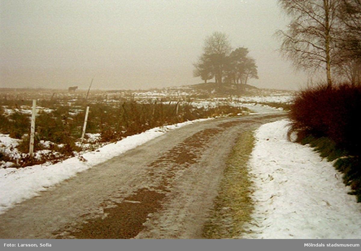 Grusväge till Sockengränsvägen 7, Fagered 2:31, Lindome. 2002-01-07.