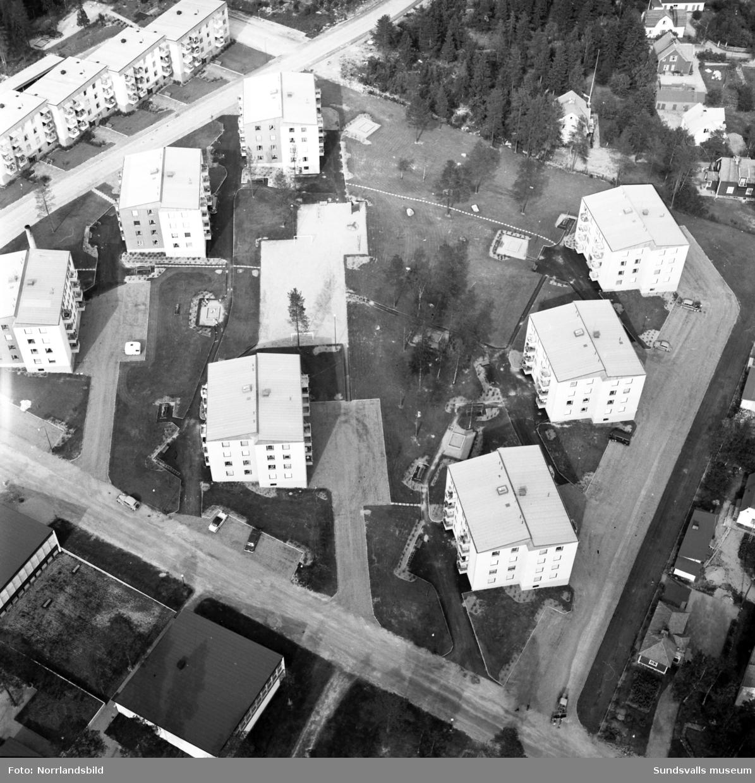 Flygbilder över Haga med flerfamiljshusen vid Tomtegränd och Tallrotsgatan i centrum.