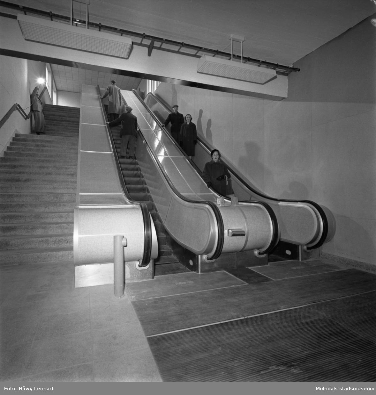 Kvinnor och män åker i Papyrus rulltrappa. Mölndal, 7/12 1956.