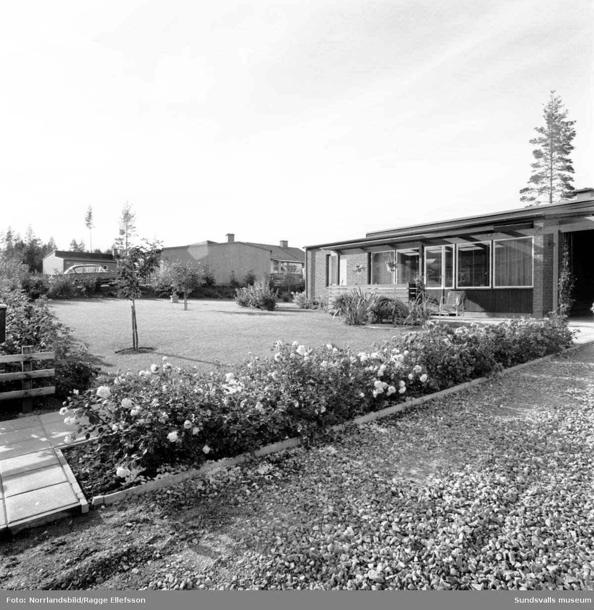 Villaområde i Sidsjön.
