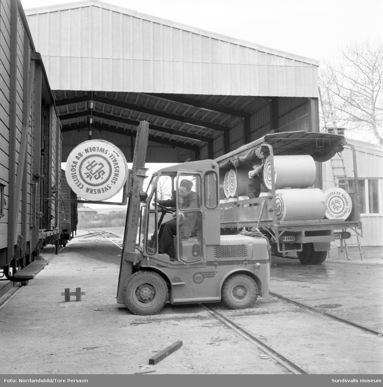 Lastning med truck och baklastare i hamnen.