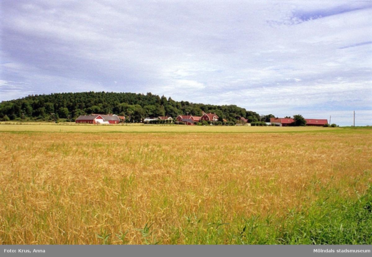 Översikt mot sydväst. Fässbergs by.