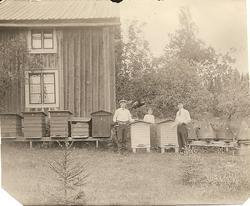 Bikupor i Amnabro, 1915. Från Vänster Reinhold Hansson, Elin